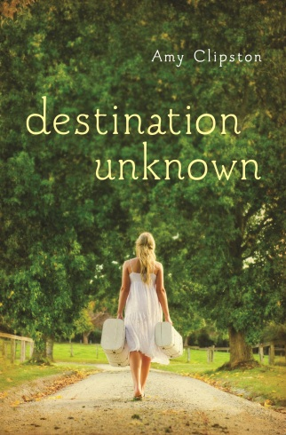 destination unknown_cover mock up